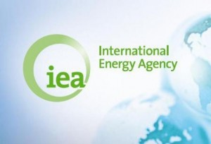 The International Energy Agency (IEA) says sub-Saharan Africa needs $300 billion in investments to achieve universal access to electricity by 2030.