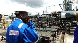 Nigeria-focused oil and gas producer Seplat on Tuesday announced plans to issue shares on the London and Lagos stock markets, raising funds to fuel the young company's expansion.